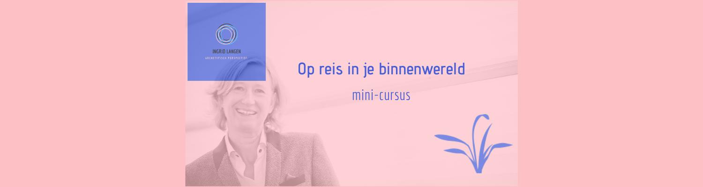 mini-cursus